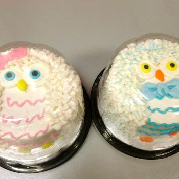 Owl Baby Shower Layer Cakes