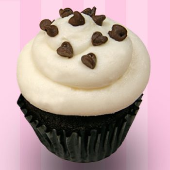 Chocolate Chocolate Chip Cupcake