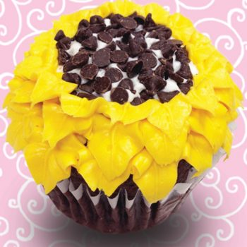 Black Bottom Jumbo Filled Cupcake