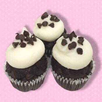 Chocolate Chocolate Chip Mini Cupcake