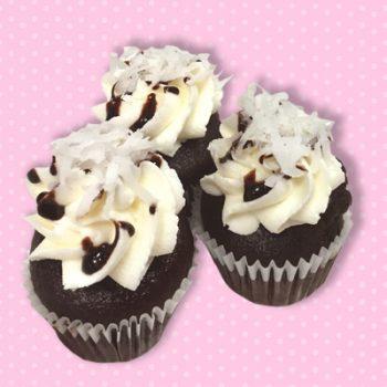 Chocolate Covered Coconut Mini Cupcakes